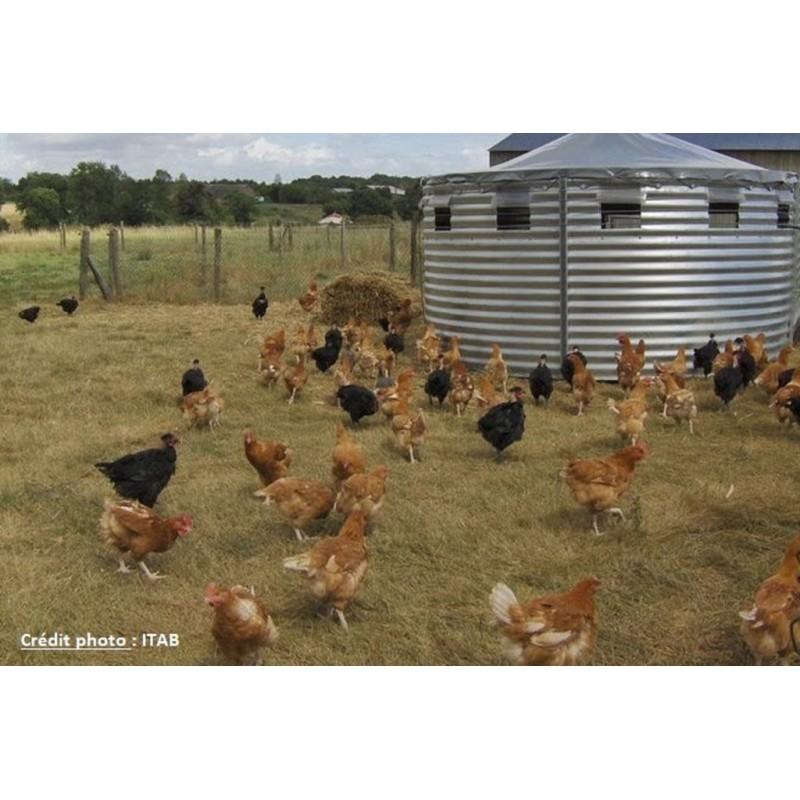 24 et 25 novembre 2021 : Raisonner l'alimentation des volailles en AB : vers plus d'autonomie ?
