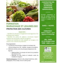 Maraîchage/légumes bio : protection des cultures