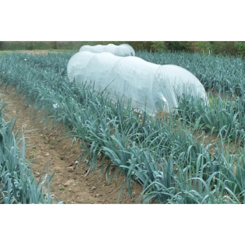 30 Janvier 2020: Maraîchage et légumes Bio / 2 : consolider ses acquis sur les techniques de protection des cultures