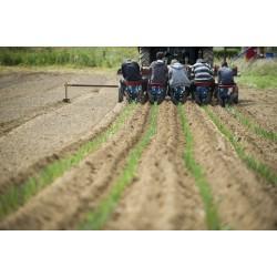 29 Janvier 2020 : Maraichage & legume bio / 1 Comprendre et accompagner les systemes de production bio